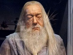 Is Dumbledore Gay?