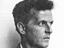 Wittgenstein in 800 Words